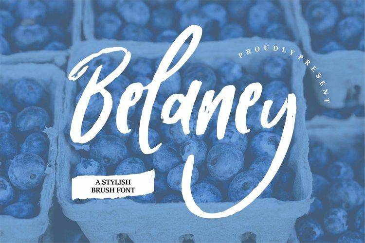 Belaney - A Stylish Brush Font example image 1
