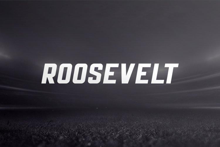 Roosevelt example image 1