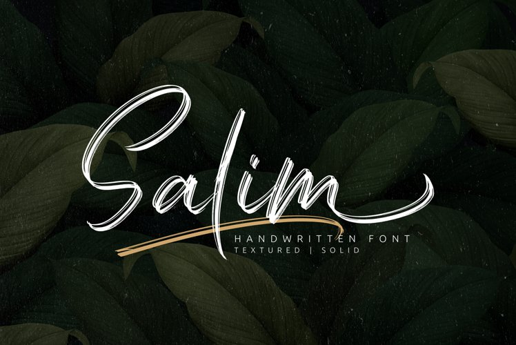 Salim - Handwritten Font example image 1