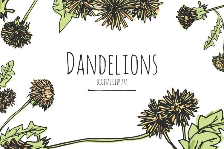 Dandelions - Digital Clip Art example image 1