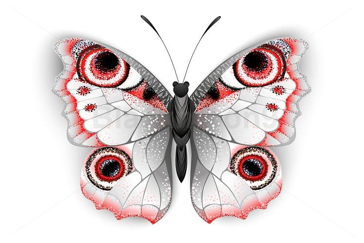 Gray butterfly Peacock Eye