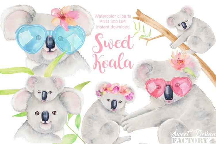 Koala watercolor clipart example image 1