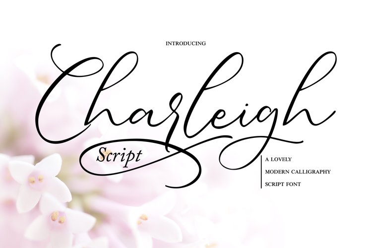 Charleigh   Modern Calligraphy Script example image 1