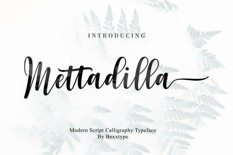 Mettadilla Script||Winter Collection example image 1