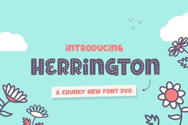 Herrington Font Duo example image 1