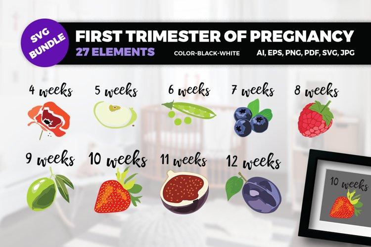 BUNDLE- First trimester of pregnancy SVG Cut Files