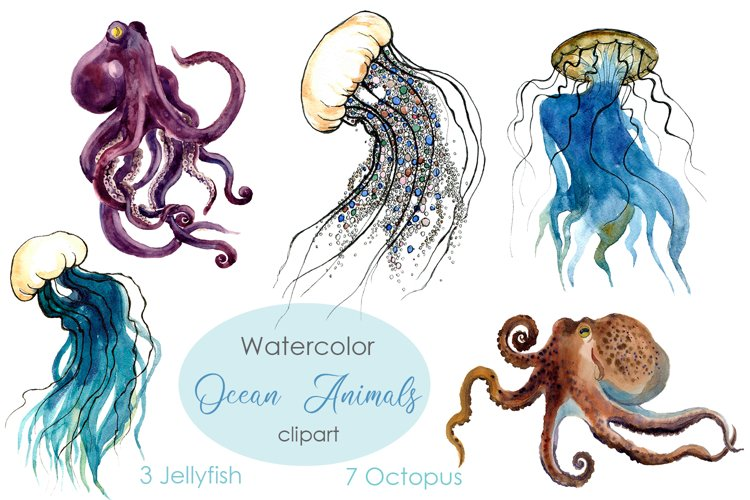 Watercolor Octopus Clipart. Jellyfish Clipart.