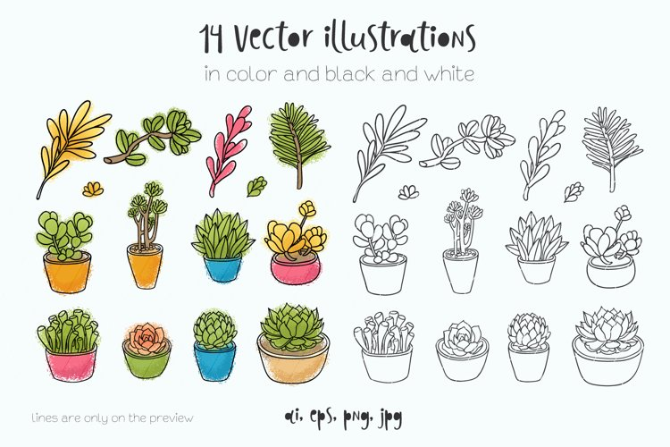 Succulents 14 vector illustrations example 1