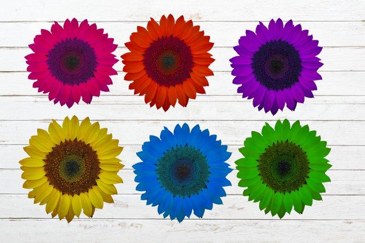 set sunflower sublimation design,sunflower png design,tshirt