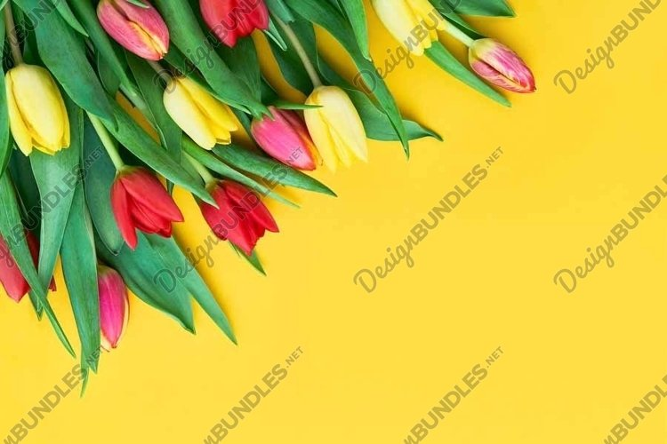 Bouquet of red and yellow tulips on yellow background example image 1