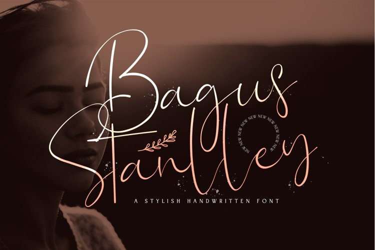 Bagus Stanlley - Stylish Script Font example image 1