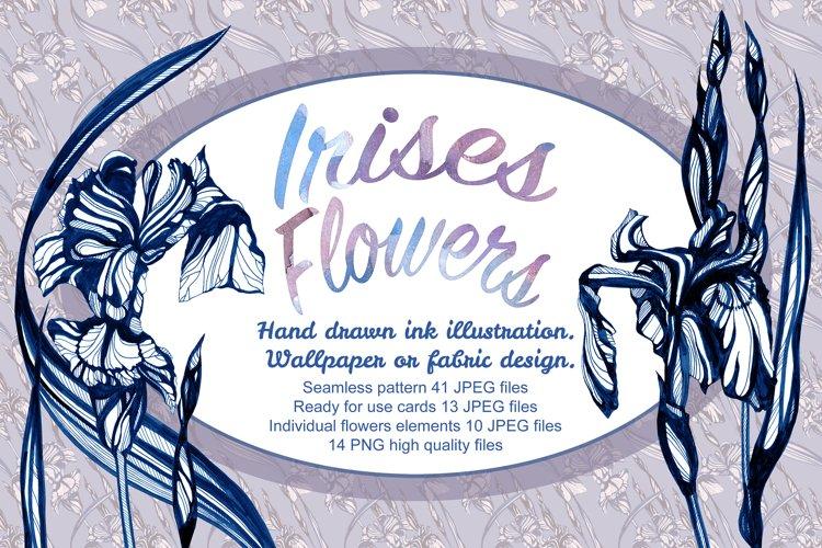 Iris flowers Hand drawn ink illustration example image 1