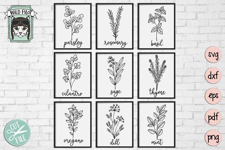 Herbs SVG files, Herb Set Cut file, Garden, Kitchen, Organic example image 1