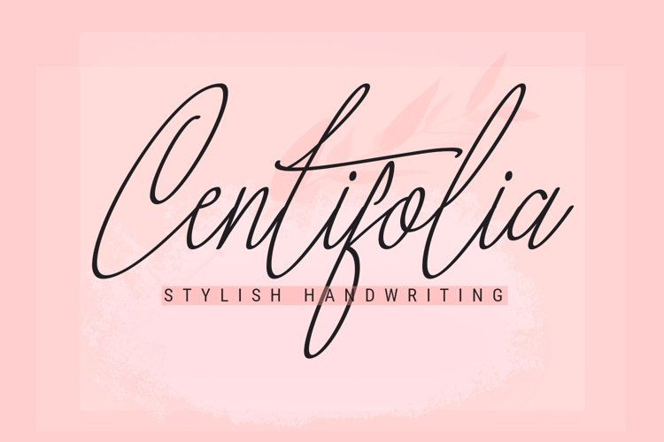 Centifolia is a lovely font example image 1