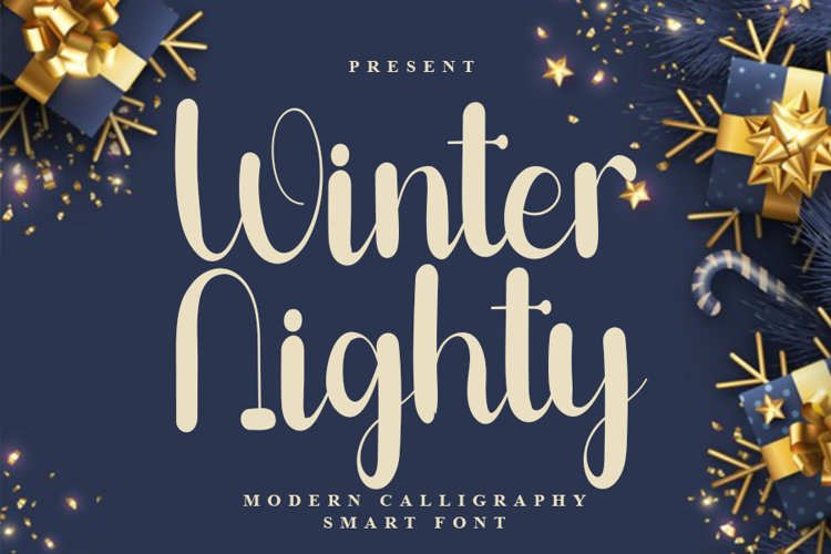 Winter Nighty - Modern Calligraphy Font example image 1