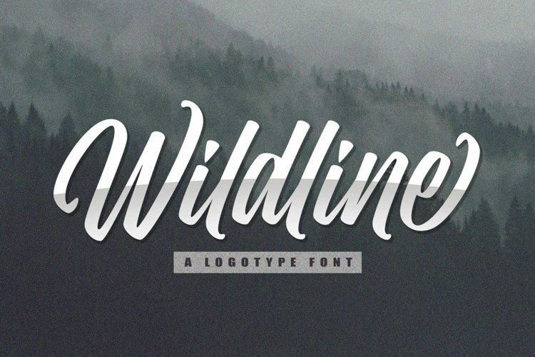 Wildline - Urban Lettering Font example image 1