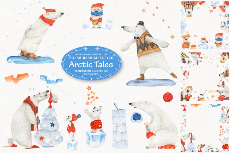 Arctic tales. Basic facts about polar bears lifestyle example image 1
