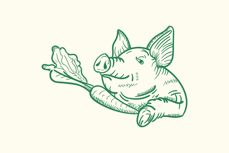 pig and carrot hand drawn vector example image 1