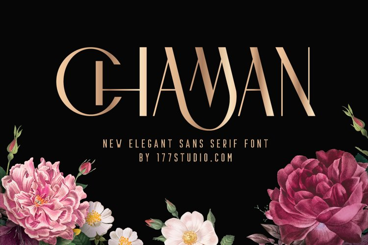 CHAMAN FONT example image 1