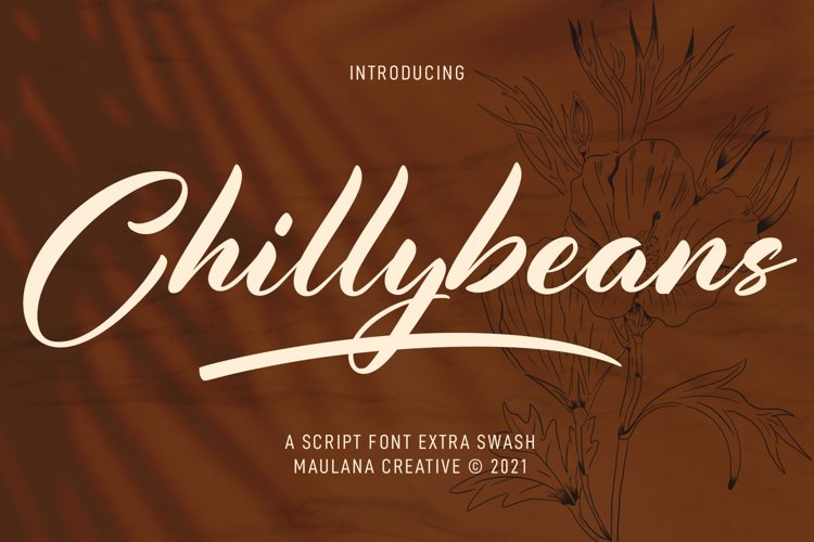 Chillybeans Script Font example image 1