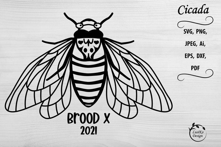Cicada brood x 2021. SVG, PNG, EPS design black silhouette