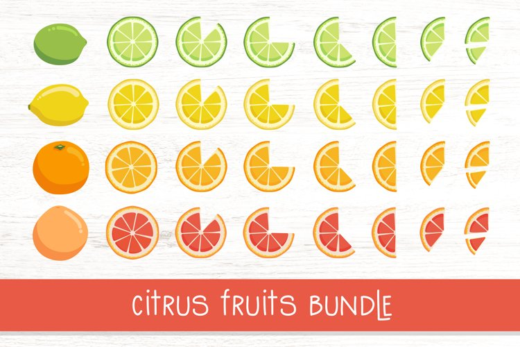 Summer vector illustrations. Citrus fruits clipart