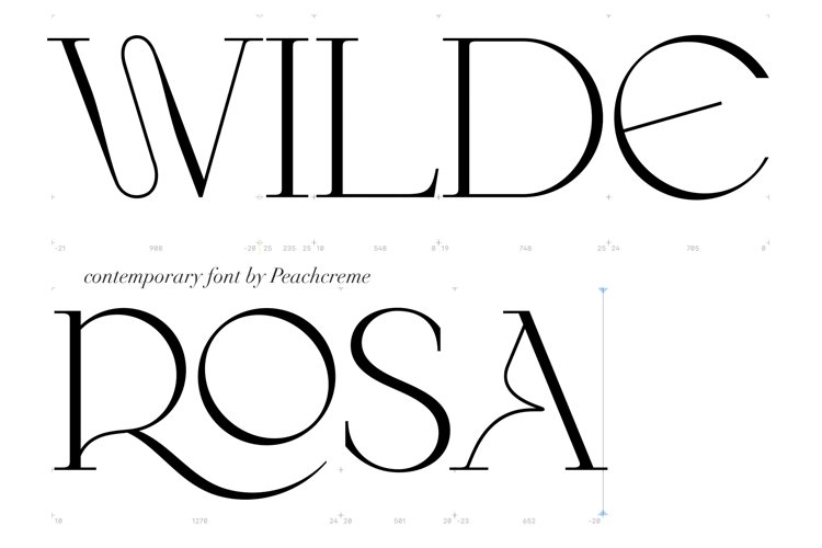 Wilde Rosa // Display Font example image 1