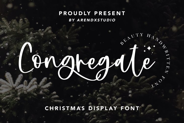 Congregate - Beauty Handwritten Font example image 1