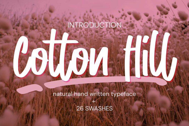Cotton Hill example image 1