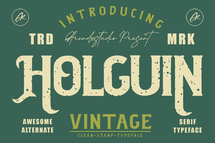 Holguin - Vintage Typeface example image 1