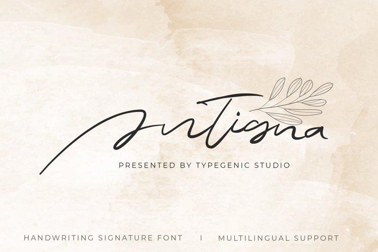 Antigna - Signature Font example image 1