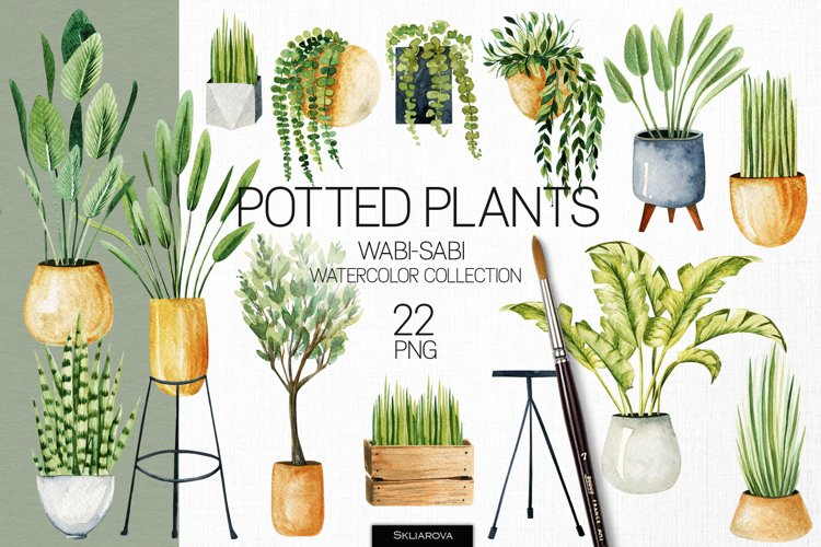 Potted plants. Watercolor clipart