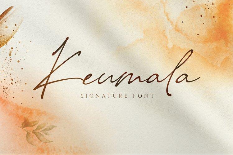 Keumala - Script Signature Font example image 1