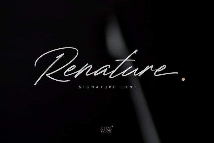 Renature - Elegant Signature Font example image 1
