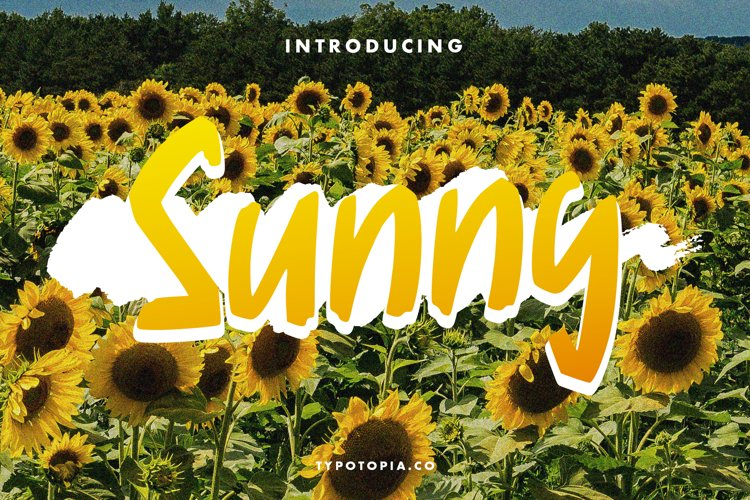 Sunny Display Font example image 1