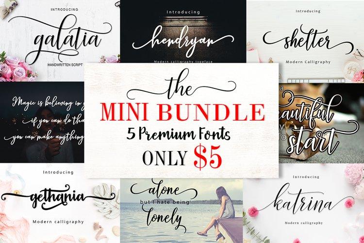 Mini Bundle 5 font only $5   WEB FONT example image 1