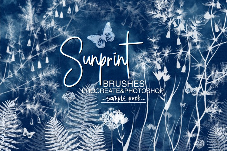 Sunprint Brushes for Procreate and Photoshop Sample Pack