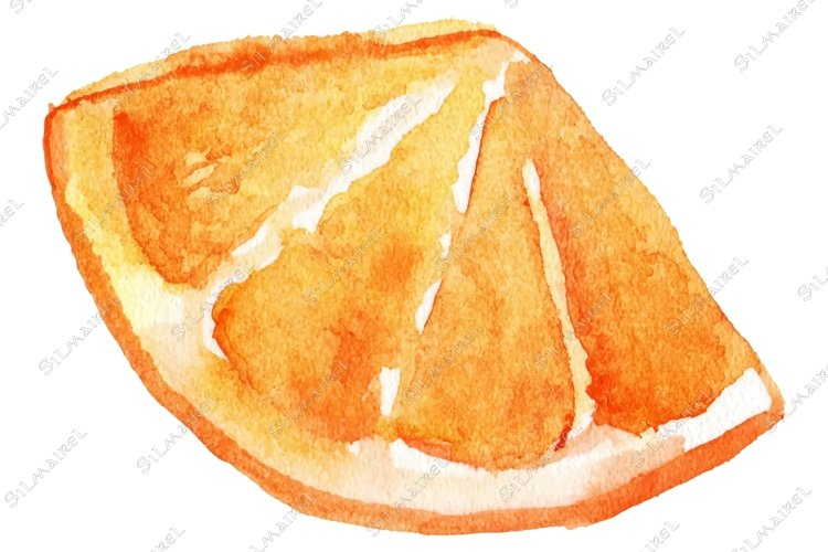 Watercolor slice of orange fruit isolated vector example image 1