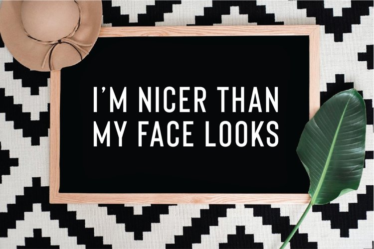 I'm nicer than my face looks SVG, PNG, DXF, JPG, EPS example image 1