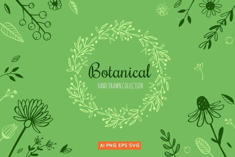 Floral botanical doodle illustrations set example image 1