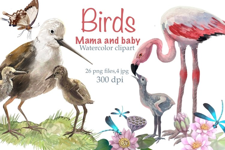 Birds mom and baby ,watercolor Clipart , nest with chicks example image 1