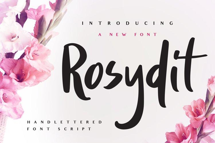 Rosydit - Handlettered Script Font example image 1