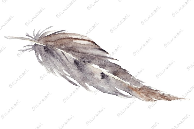Watercolor brown gray grey single feather vector isolated example image 1