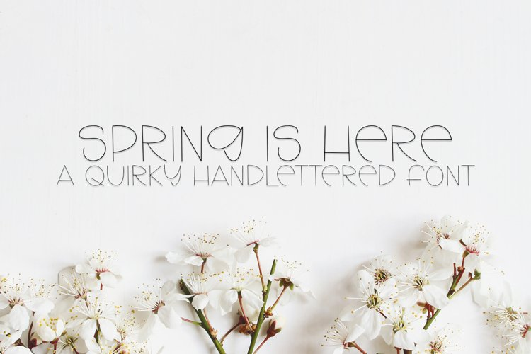 Spring Is Here - A Quirky Handlettered Font example image 1