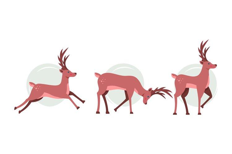 Reindeer Illustrations