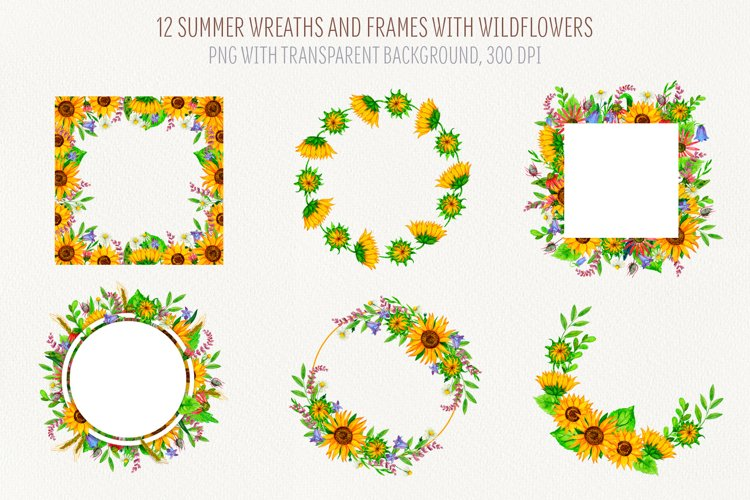 Set of watercolor wildflowers wreaths and frames