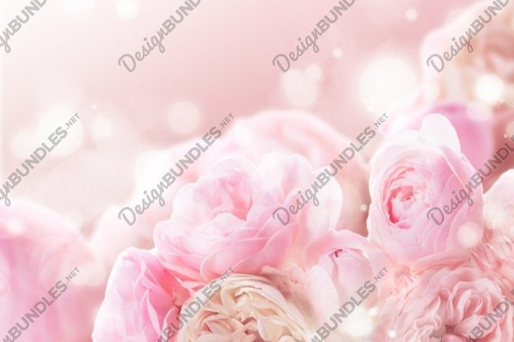 Pink roses bunch example image 1