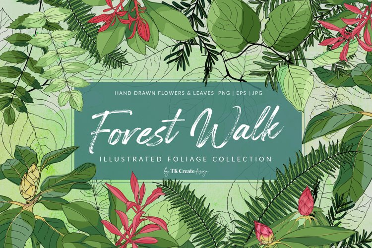 Forest Walk Hand Drawn Foliage Collection