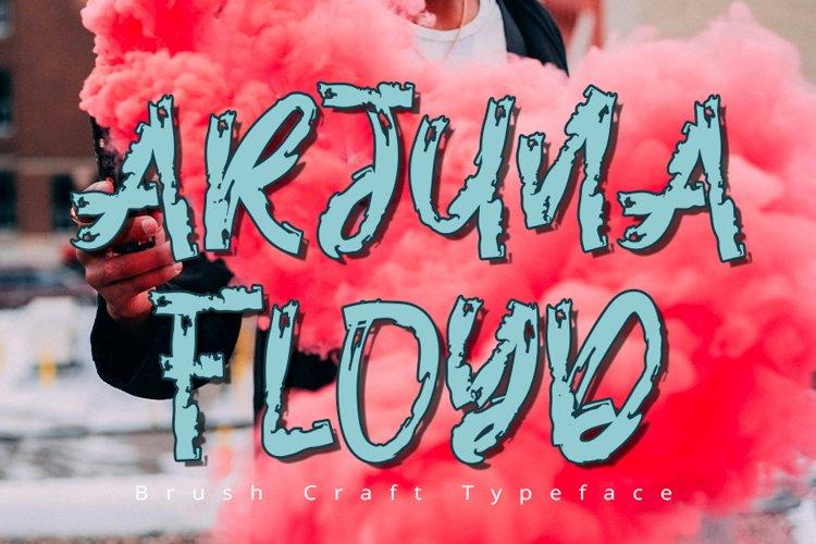 Arjuna Floyd | Modern Typeface Font