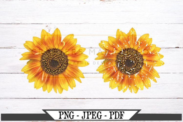 Sunflower Regular and Distressed PNG example image 1